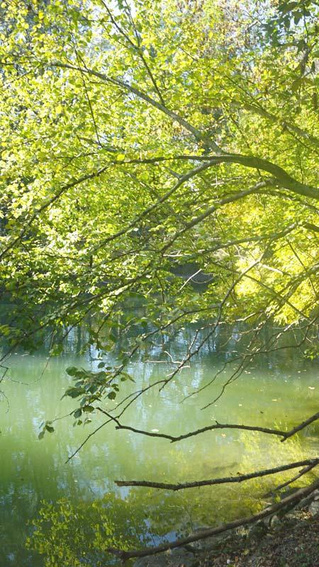 Amper Ufer bei Fürstenfeldbruck